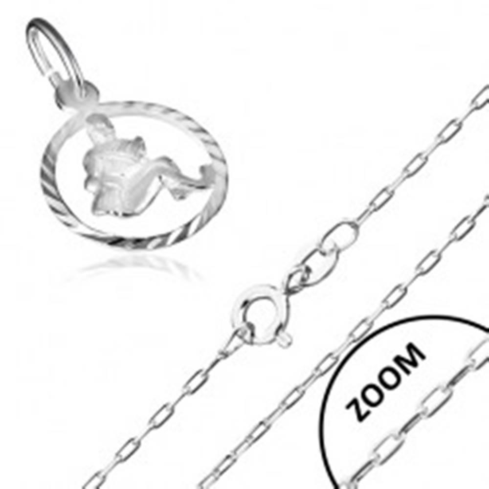 Šperky eshop Náhrdelník zo striebra 925 so znamením zverokruhu, VODNÁR