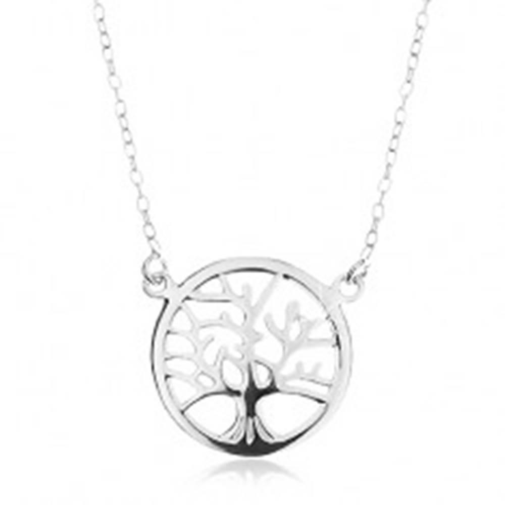 Šperky eshop Strieborný náhrdelník 925, retiazka a prívesok - lesklý strom života v kruhu