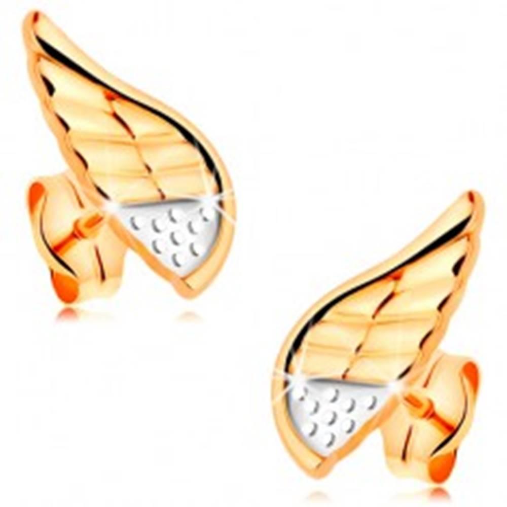 Šperky eshop Náušnice v kombinovanom 14K zlate - ligotavé anjelské krídlo s bodkami a zárezmi