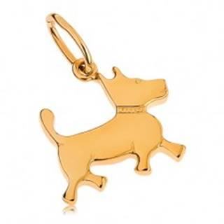 Prívesok v žltom 9K zlate - malý psík s gravírovaným obojkom