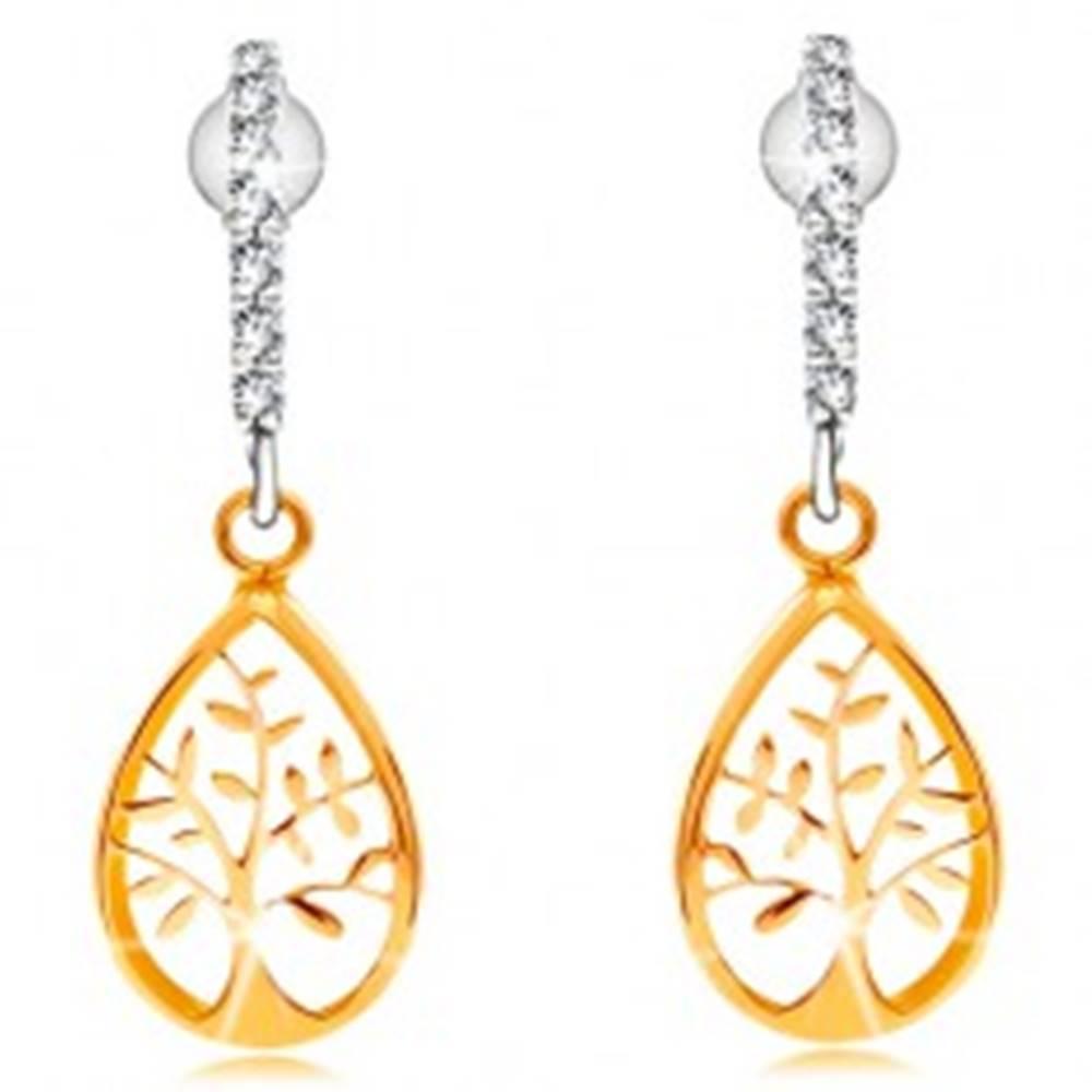 Šperky eshop Náušnice v kombinovanom 14K zlate - oblúk z čírych zirkónikov, strom života