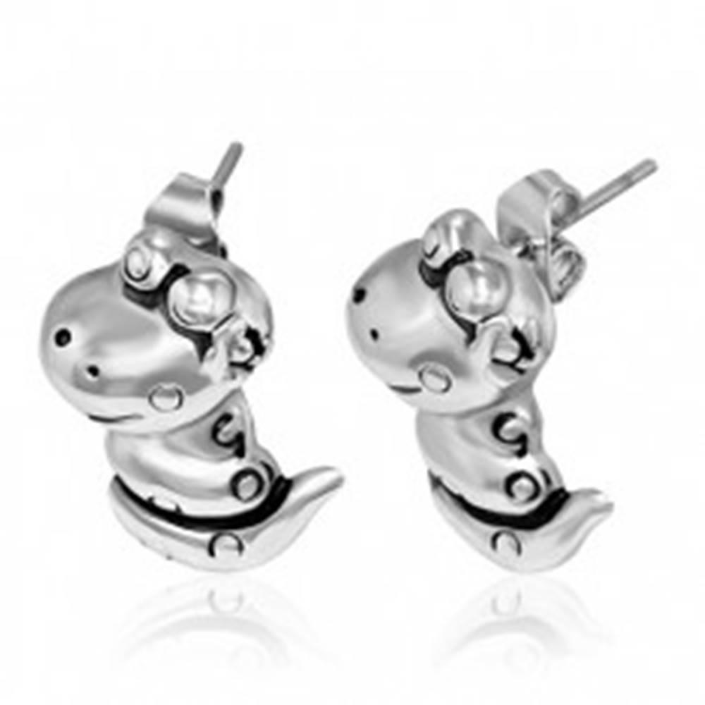 Šperky eshop Puzetové náušnice z ocele - usmievajúci had