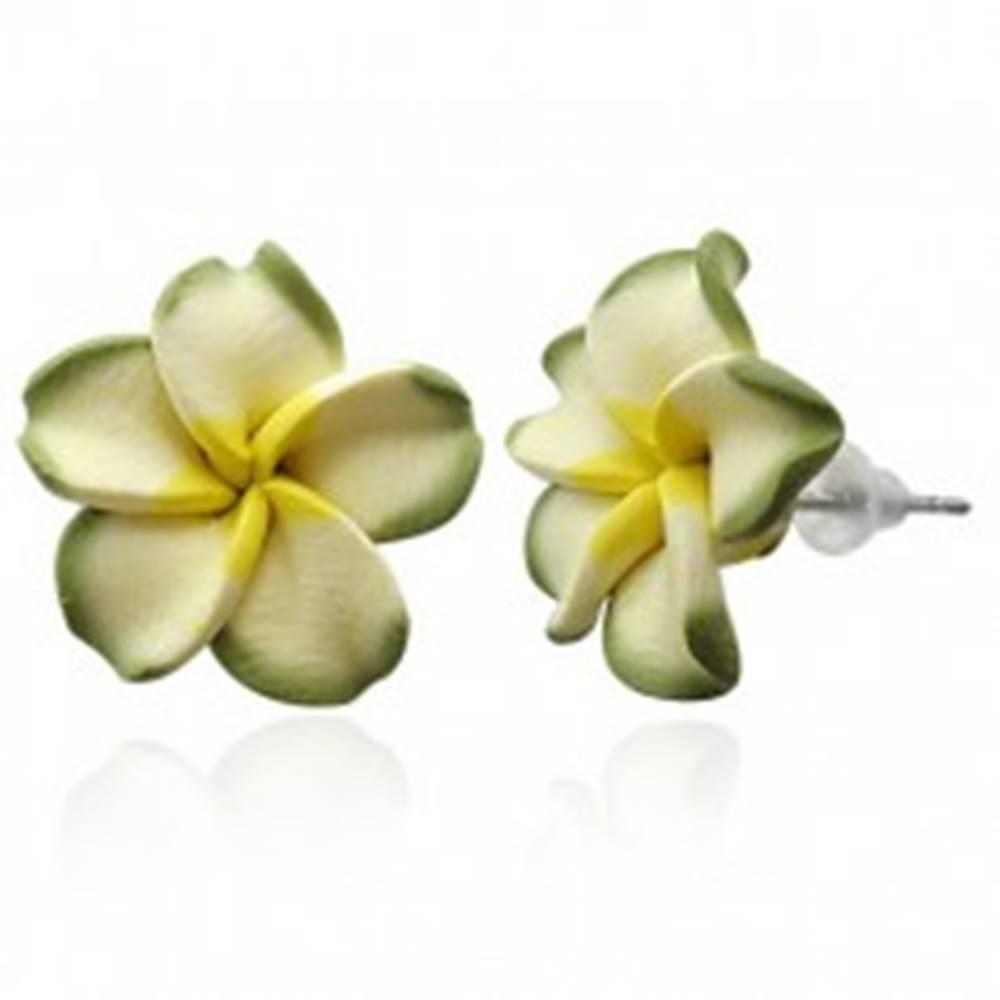 Šperky eshop Zelený kvietok Plumeria - fimo náušnice