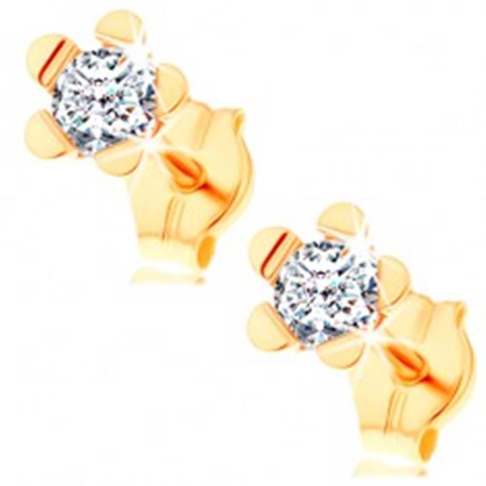 Šperky eshop Náušnice zo žltého 14K zlata - trblietavý kvietok s lesklými lupeňmi
