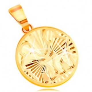Zlatý prívesok 585 - lesklé lúčovité zárezy, znamenie zverokruhu BLÍŽENCI