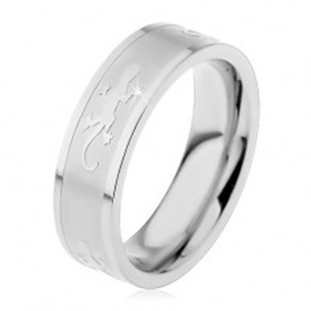 Šperky eshop Prsteň z chirurgickej ocele s matným stredom, lesklé jašteričky, 6 mm - Veľkosť: 49 mm