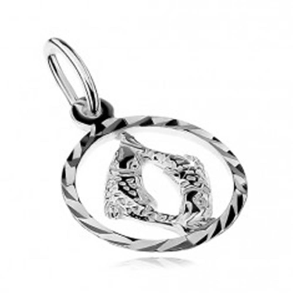 Šperky eshop Prívesok zo striebra 925 - kruh so znamením zverokruhu - RYBY