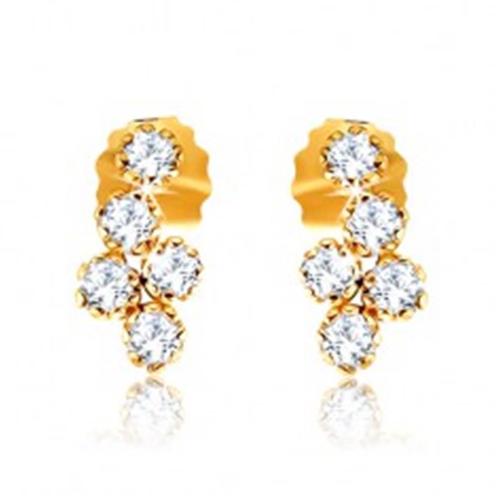 Šperky eshop Puzetové náušnice v žltom 9K zlate - strapec z okrúhlych zirkónov čírej farby