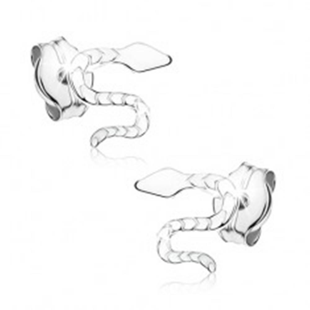 Šperky eshop Puzetové náušnice z bieleho 9K zlata - zvlnený gravírovaný had
