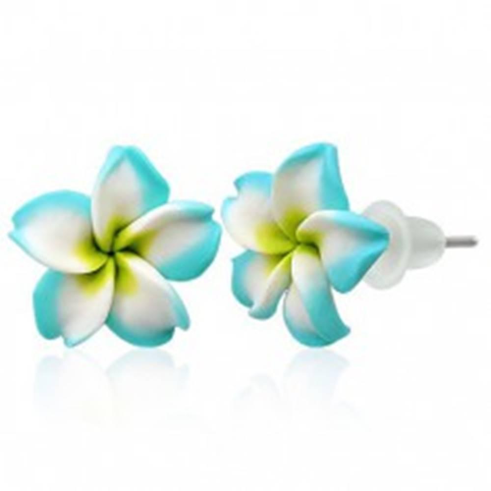 Šperky eshop Malé Fimo náušnice - tyrkysovo biely kvietok
