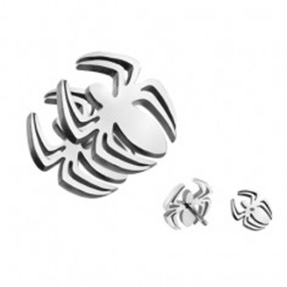 Šperky eshop Fake plug do ucha z ocele - forma pavúka