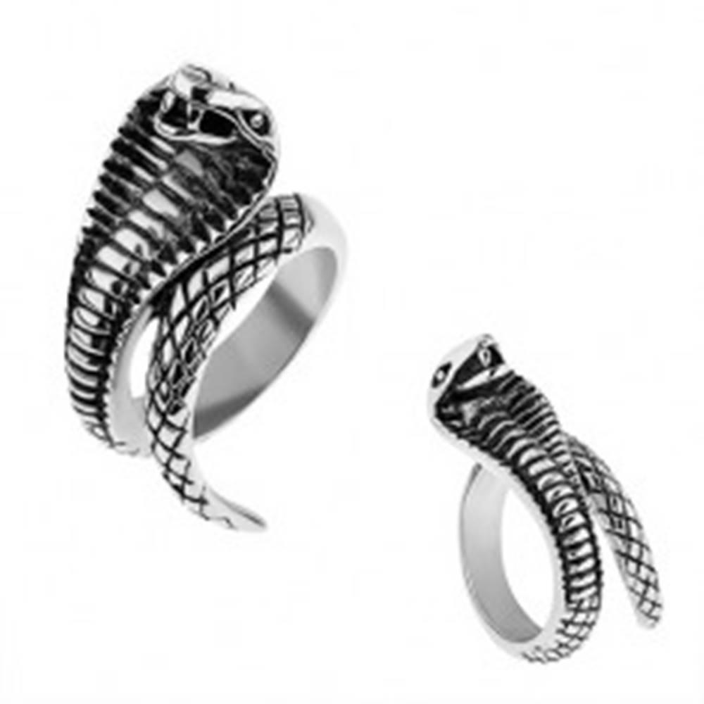 Šperky eshop Oceľový prsteň striebornej farby, vypuklá patinovaná kobra - Veľkosť: 57 mm