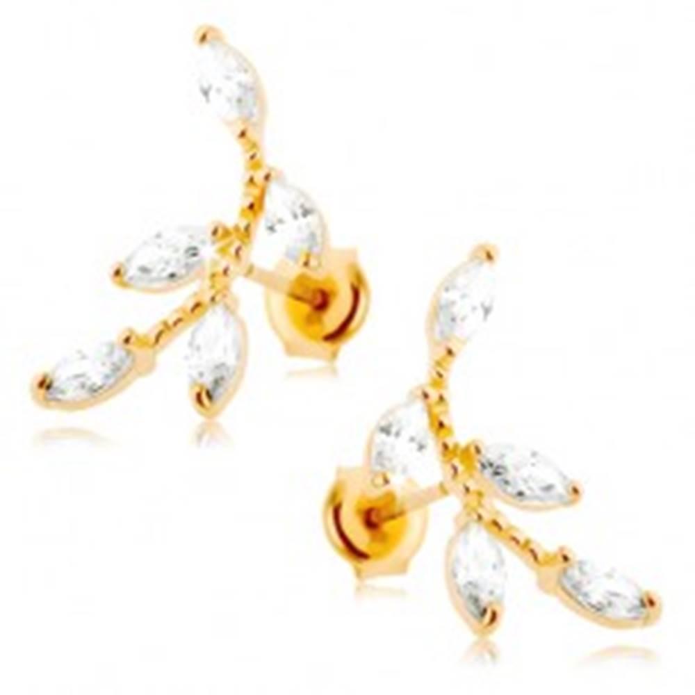 Šperky eshop Náušnice v žltom 14K zlate - ligotavá vetvička, číre zirkónové lístočky
