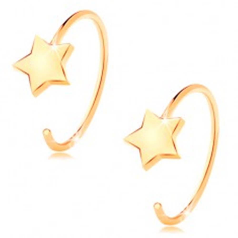 Šperky eshop Okrúhle náušnice zo žltého 14K zlata - malá päťcípa hviezda