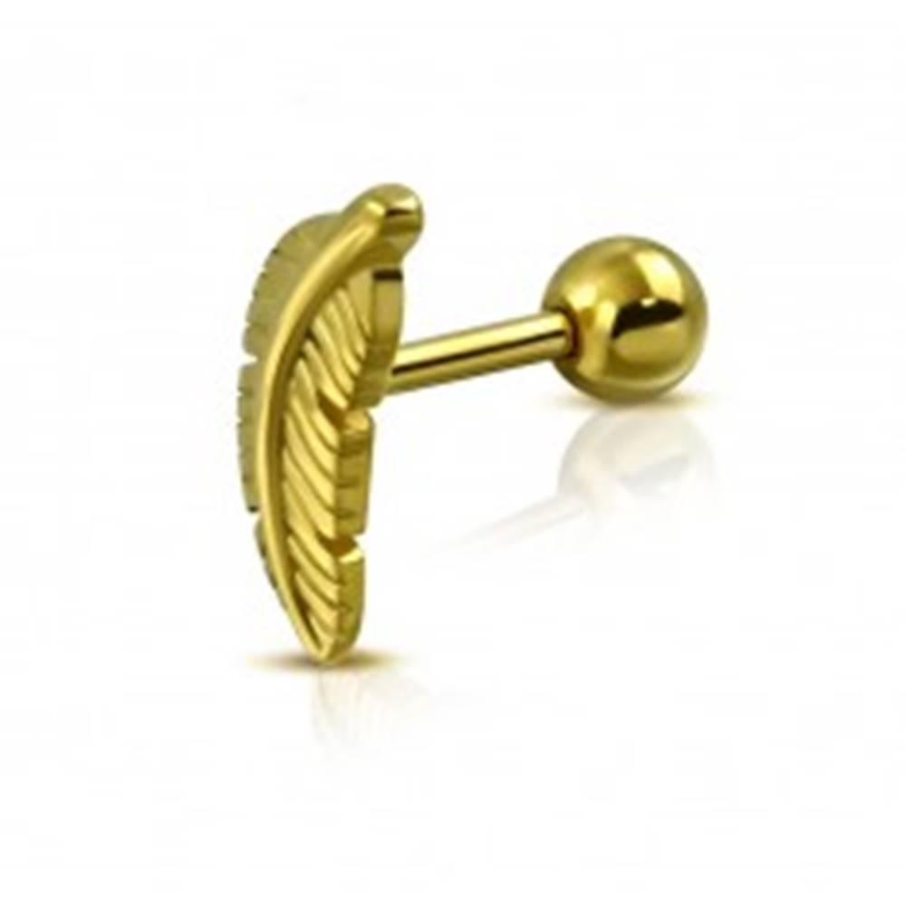 Šperky eshop Piercing do tragusu z chirurgickej ocele - vtáčie pierko, zlatá farba