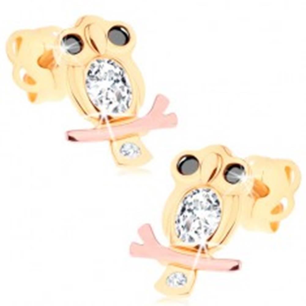 Šperky eshop Náušnice v 14K zlate - múdra sova s čírym bruškom a čiernymi očami