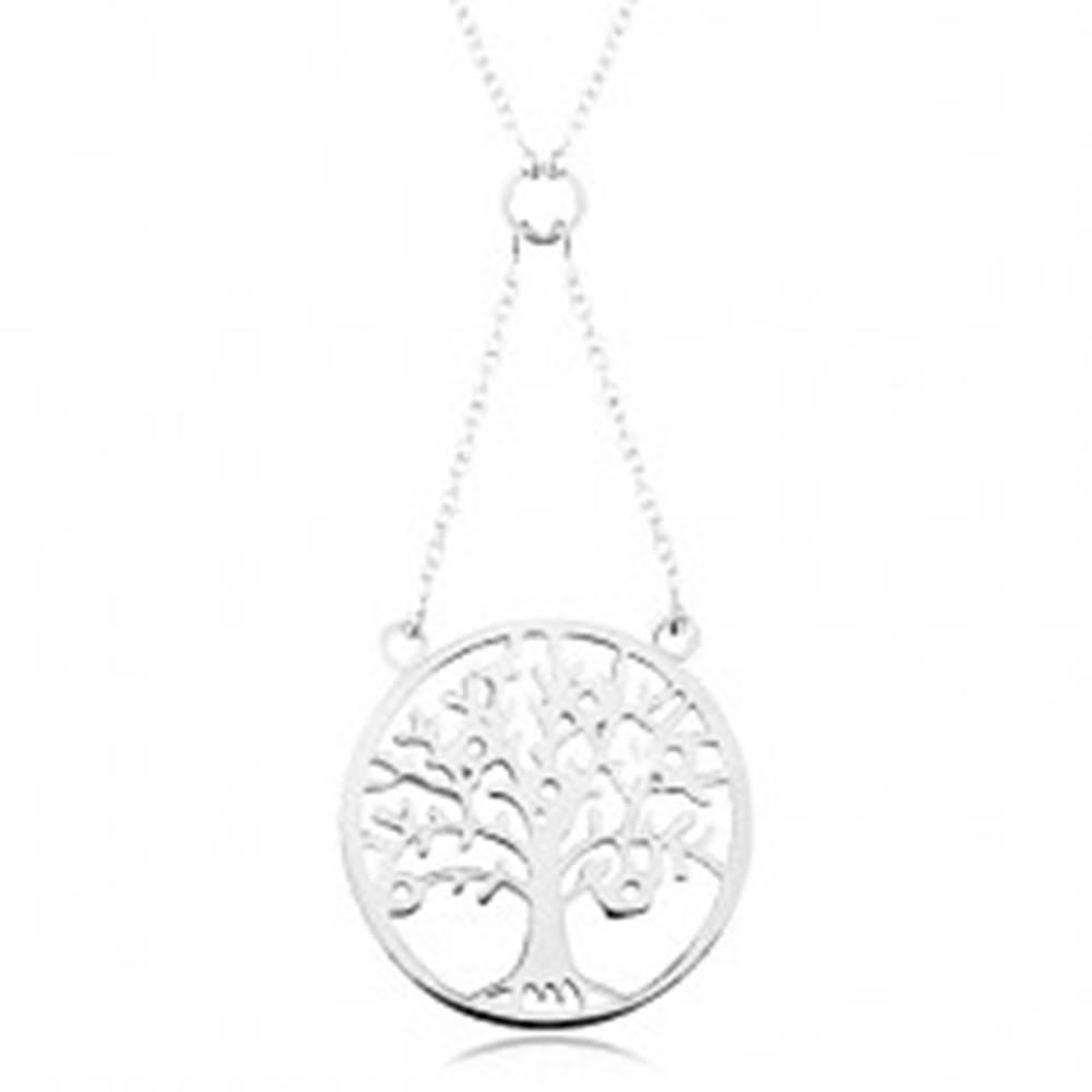 Šperky eshop Náhrdelník zo striebra 925, retiazka a prívesok - strom života zdobený zirkónmi